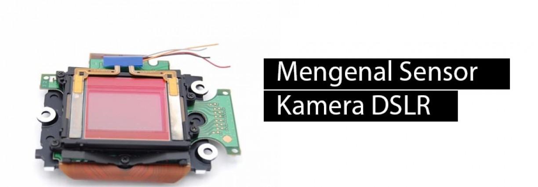 Mengenal Sensor Kamera